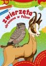 Maluszkowe malowanie. Zwierzęta chronione w Polsce Opracowanie zbiorowe