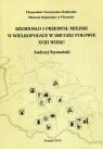 Rzemiosło i przemysł miejski w Wielkopolsce w drugiej połowie XVIII wieku