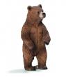 Niedźwiedzica Grizzly - 14686