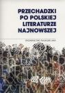 Przechadzki po polskiej literaturze najnowszej