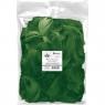 Piórka dekoracyjne Titanum - zielone (414333)