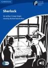 Sherlock Level 5 Upper-Intermediate MacAndrew Richard