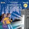 Zagadka starego grobowca audiobook Dariusz Rekosz