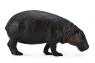 Hipopotam karłowaty L (004-88686)