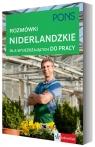 Rozmówki niderlandzkie dla wyjeżdżających do pracy