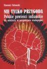 Nie tylko przygoda Polskie powieści indiańskie dla młodzieży w perspektywie etnologicznej