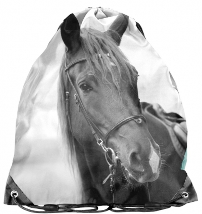 Worek na buty Horse PP21KE-712 PASO