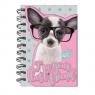 Notes Studio Pets chihuahua w okularach (PTD-3630)