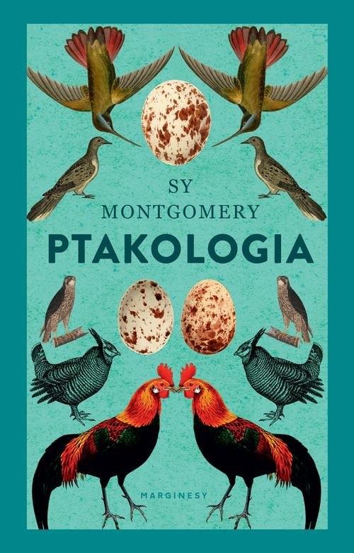 Ptakologia Montgomery Sy