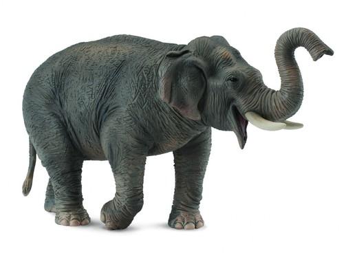 Słoń azjatycki XL (88486)