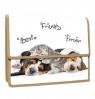 Teczka z klapką na rzepy A4 PP Animals