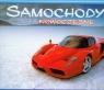 Kalendarz 2011 WL07 Nowoczesne samochody rodzinny