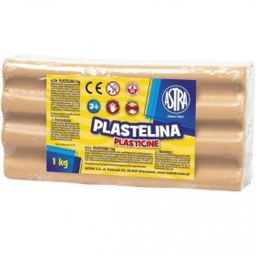 Plastelina Astra, 1kg cielista (303111003)