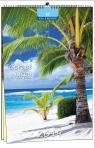 Kalendarz 2019 7 Planszowy Gorące Wyspy EV-CORP