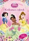Disney Księżniczka Królestwo cyferek