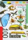 Na ścieżkach wiedzy 8 100 owadów Encyklopedia