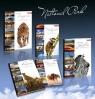 Brulion A5/96K/TW kratka 5 szt. National Parks