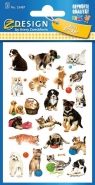Naklejki dla dzieci - psy i koty (53487)