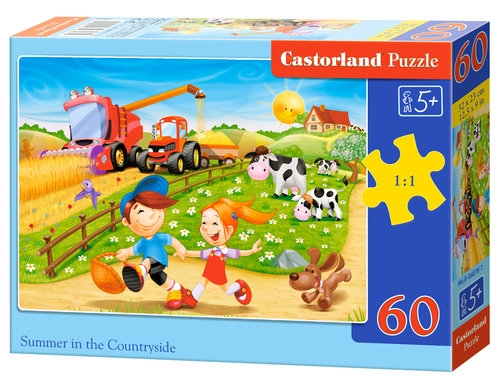 Puzzle 60: Summer in the Countryside