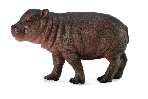Hipopotam karłowaty młode S