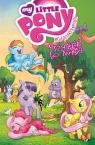 My Little Pony - Przyjaźń to magia Tom 1 Cook Katie