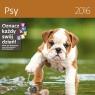 Psy. Kalendarz ścienny 2016