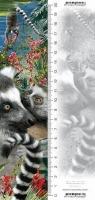 Zakładka 3D Lemur