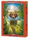 Puzzle 500: Pływający pies (B-52882)