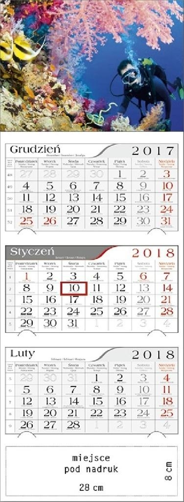 Kalendarz 2018 Trójdzielny Rafa