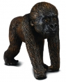Goryl zachodni dziecko (004-88088)
