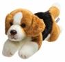 Leżący pies Beagle 30 cm (12088)
