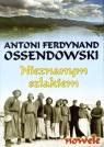 Nieznanym szlakiem (Uszkodzona okładka)nowele Ossendowski Antoni Ferdynand