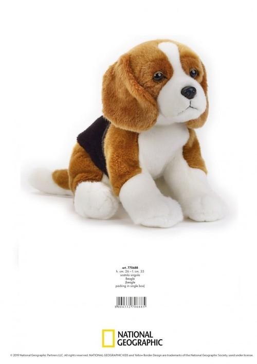 Beagle Maskotka (770688)