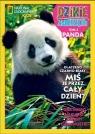 Dzikie Zwierzęta Panda t.3   /K/