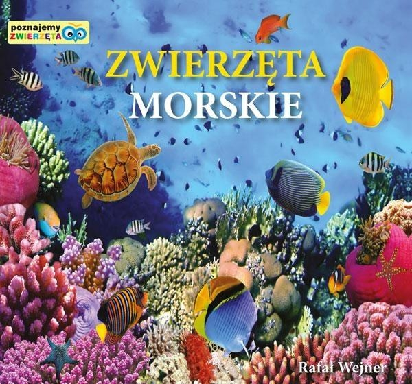 Zwierzęta morskie Poznajemy zwierzęta Wejner Rafał