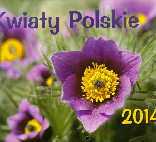 KALENDARZ 2014 KWIATY POLSKIE WISZĄCY POZIOMY OPRACOWANIE  ZBIOROWE