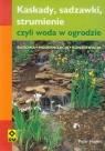 Kaskady, sadzawki strumienie, czyli woda w ogrodzie