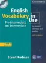 English Vocabulary in Use + CD  Preintermediate and intermediate