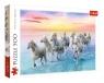 Puzzle 500: Białe konie w galopie (37289)