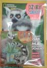 Dzikie Zwierzęta 4 Lemur