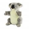 Koala australijski Pacynka (770778)