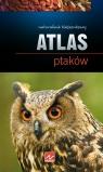 Atlas ptaków  Przybyłowicz Anna, Przybyłowicz Łukasz
