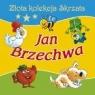 Jan Brzechwa Złota kolekcja Skrzata