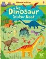 Big Dinosaur. Sticker Book