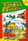 Tajemnicze labirynty Smoka Anatola Nowicki Artur