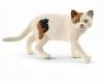 Kot amerykański krótkowłosy - Schleich (13894)