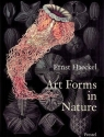 Art Forms in Nature Prints of Ernst Haeckel