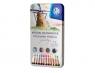 Kredki z drewna cedrowego w metalowym pudełku Astra Prestige - 12 kolorów (312117001)
