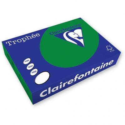 Papier kolorowy Trophee kolorowy A4 - zielony choinkowy 160 g (xca41019)