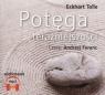 Potęga teraźniejszości audiobook Tolle Eckhart